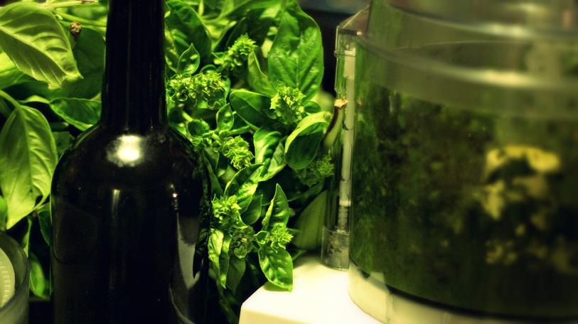 Basilikumöl – die fette Aromaexplosion