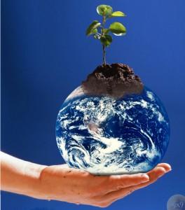 Nachhaltigkeit betrifft uns alle /(CC) Foto: Gravityx9/flickr