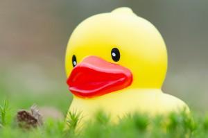 Ein original Duckface. Tote Augen und Plastikgesicht für Profis ein Muss / (C) flickr - Petra Uding