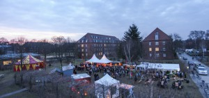 Teilnehmerbild: Spielwiese von oben / (C) Leuphana Universität