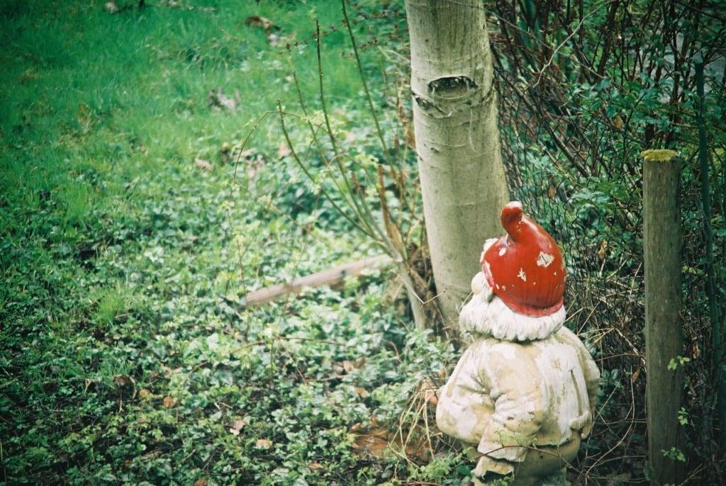 Unnachhaltige Zwerge – warum kleine Menschen die Umwelt zerstören