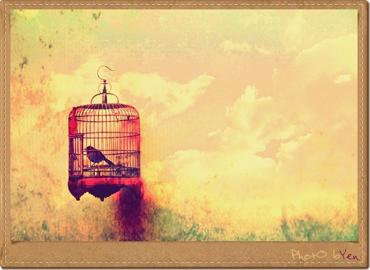 Schlimmer als ein goldener Käfig: einer ohne Gitter. / (C) flickr - Yen H Nguyen