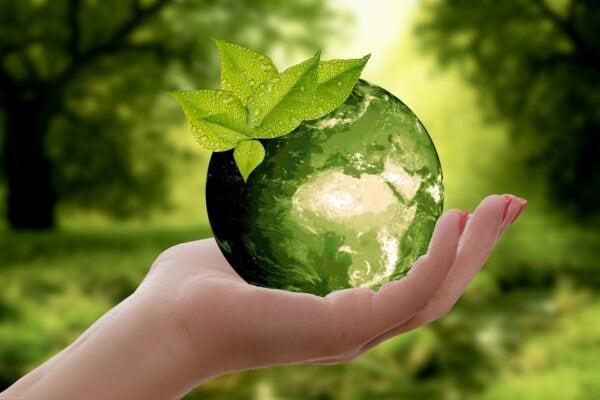 Natur Erde Nachhaltigkeit Blatt Vorsicht Zyklus - (c) Pixabay