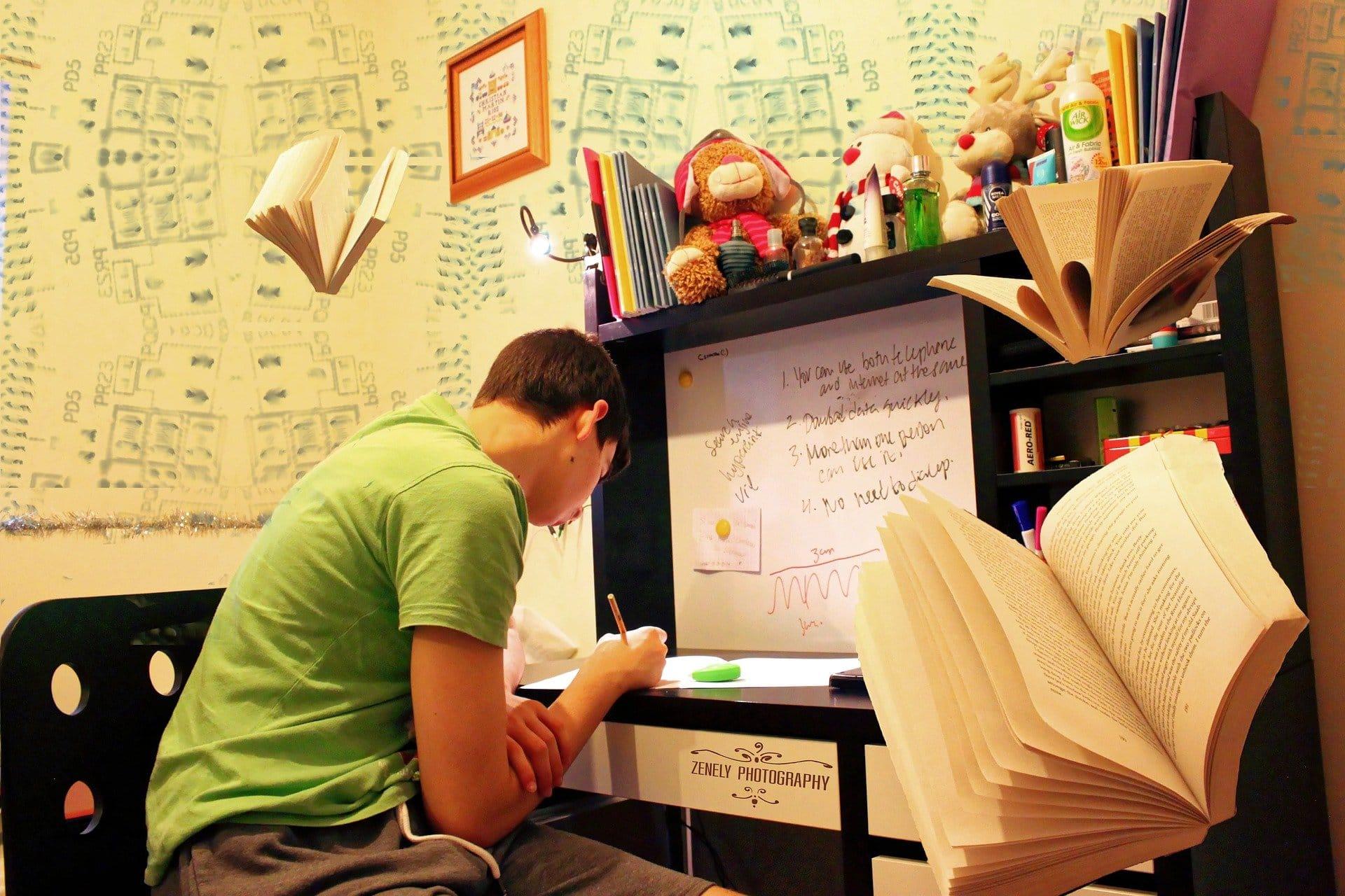 Studium Prüfungen Vorbereitung Wissen Teenage - (c) Pixabay